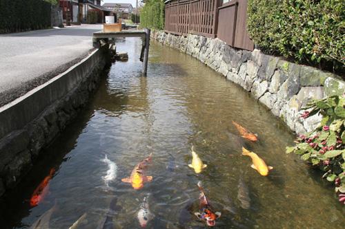 aibagawa3.jpg